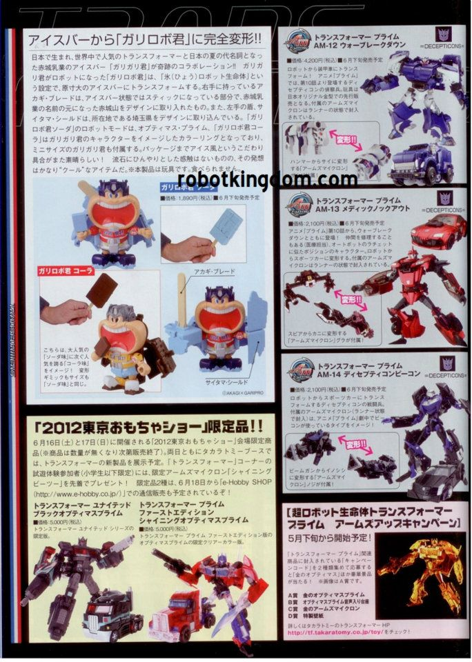 27298969d1337956860-robot-kingdom-larger-clearer-pics-japanese-knock-out-breakdown-553573_4339270632