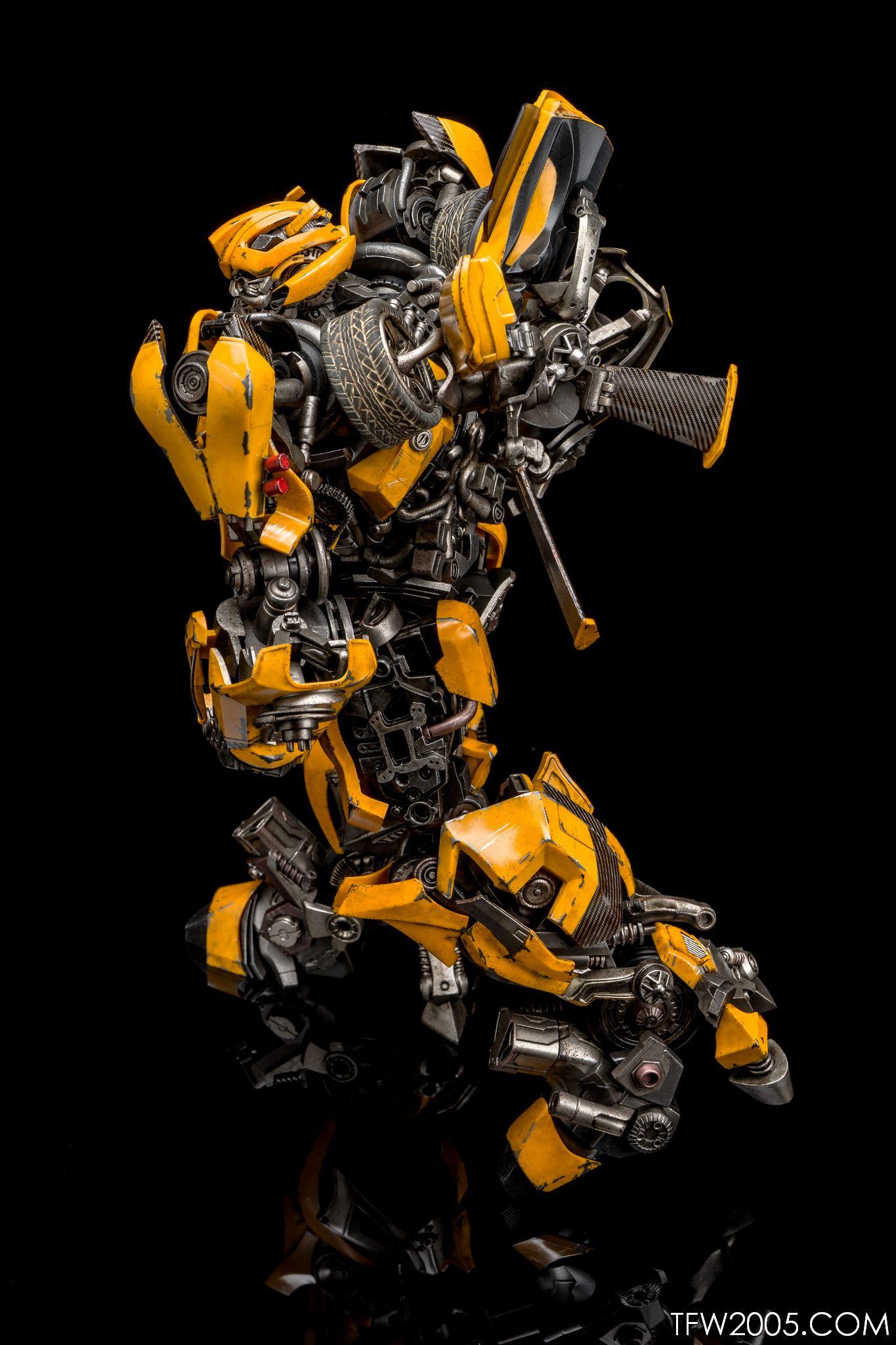 3A Bumblebee 024