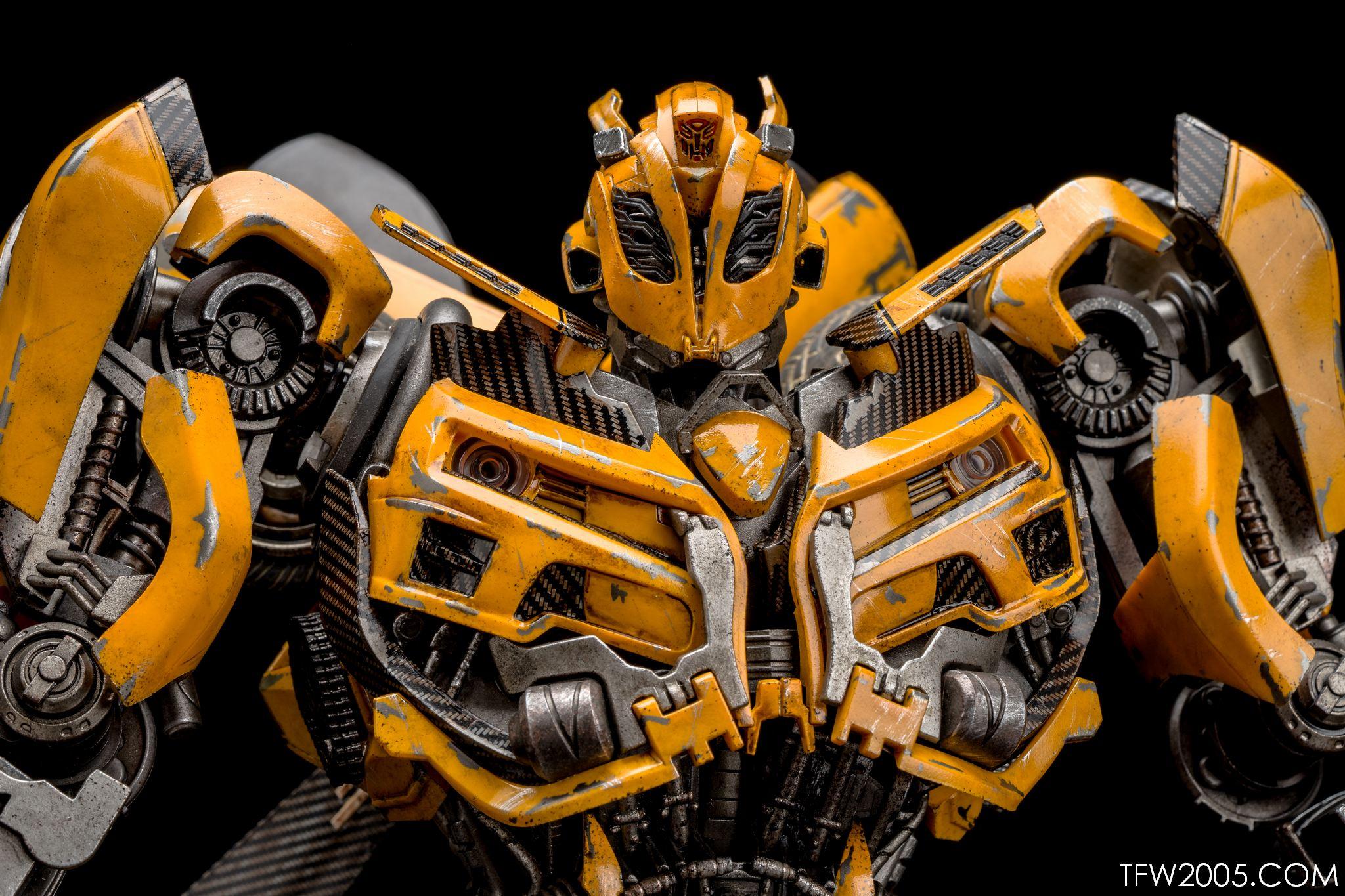 3A Bumblebee 032