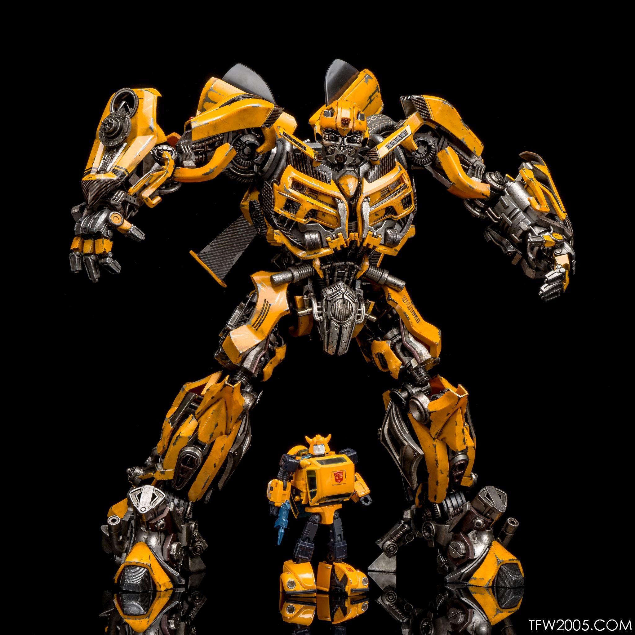 3A Bumblebee 071