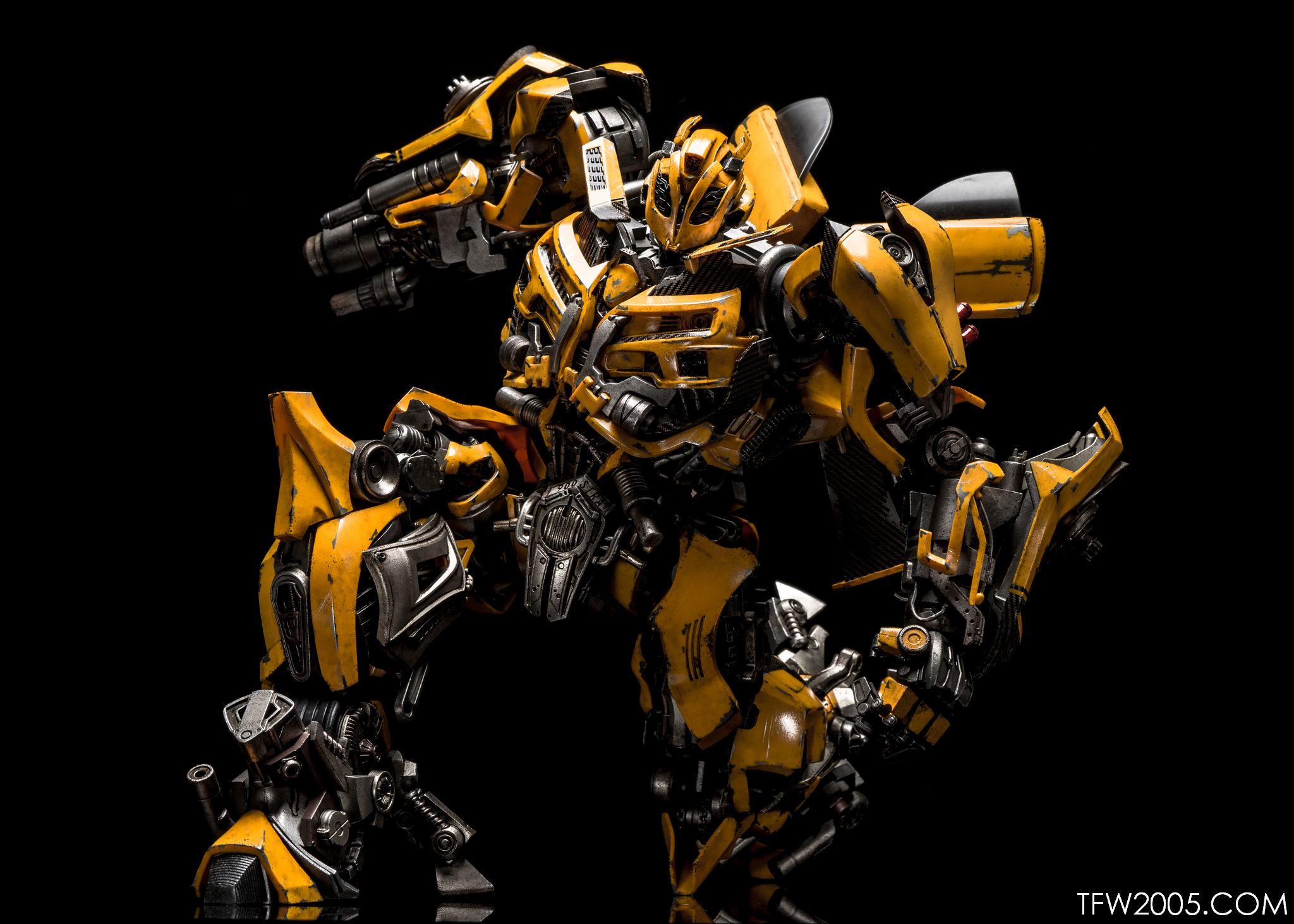 3A Bumblebee 082