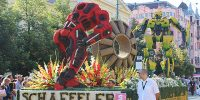Bumblebee and Stinger at the Debrecen flower carnival