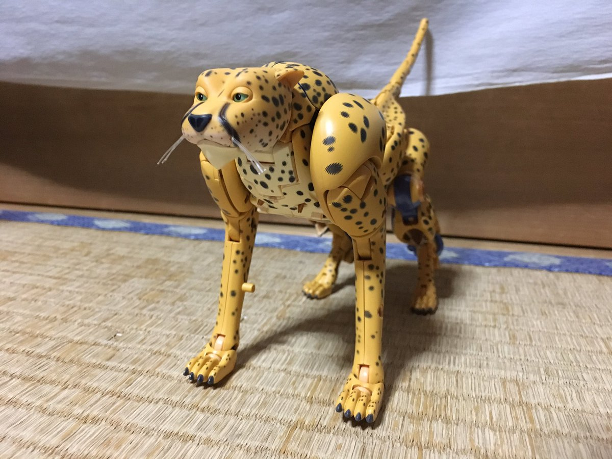 MP_Cheetor_Inhand_01.jpg