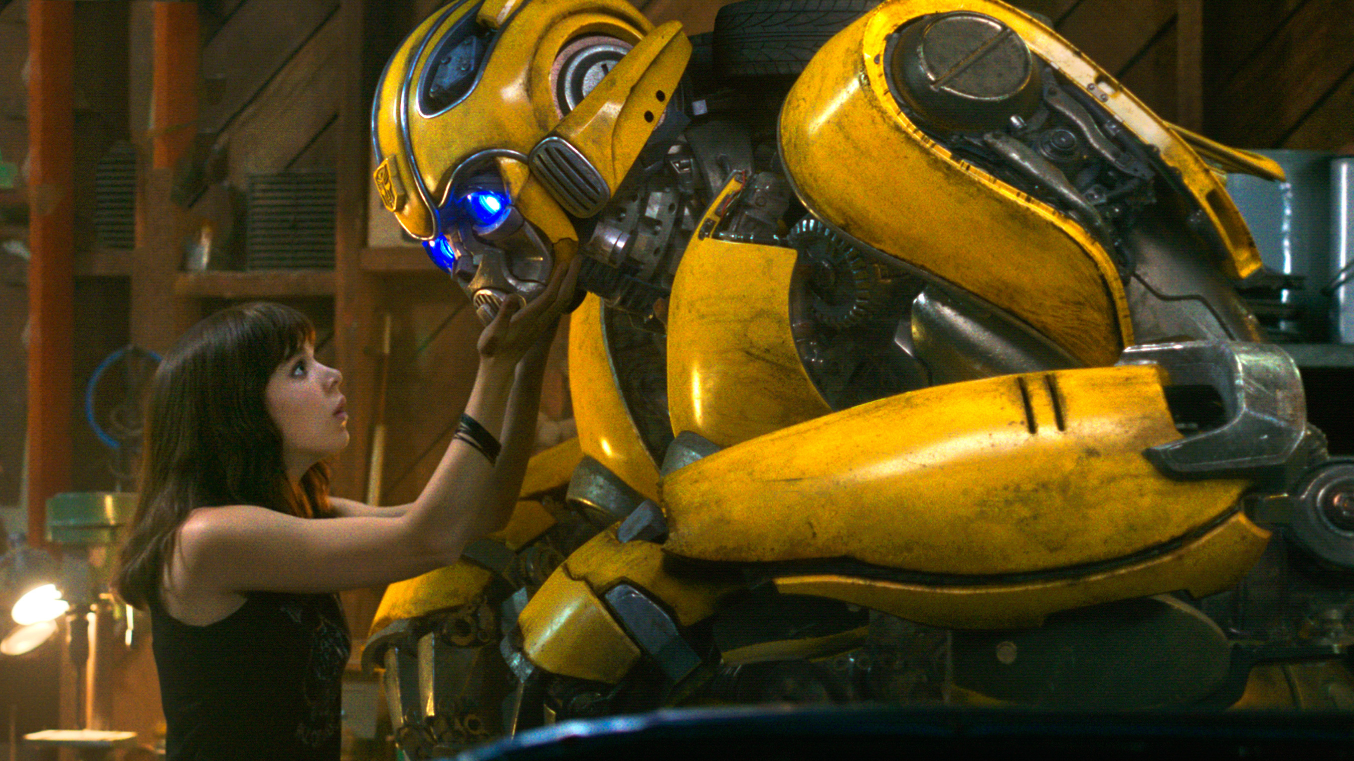 Bumbel Bee Movie: Hailee Steinfeld Donated Two Tickets For The Bumblebee