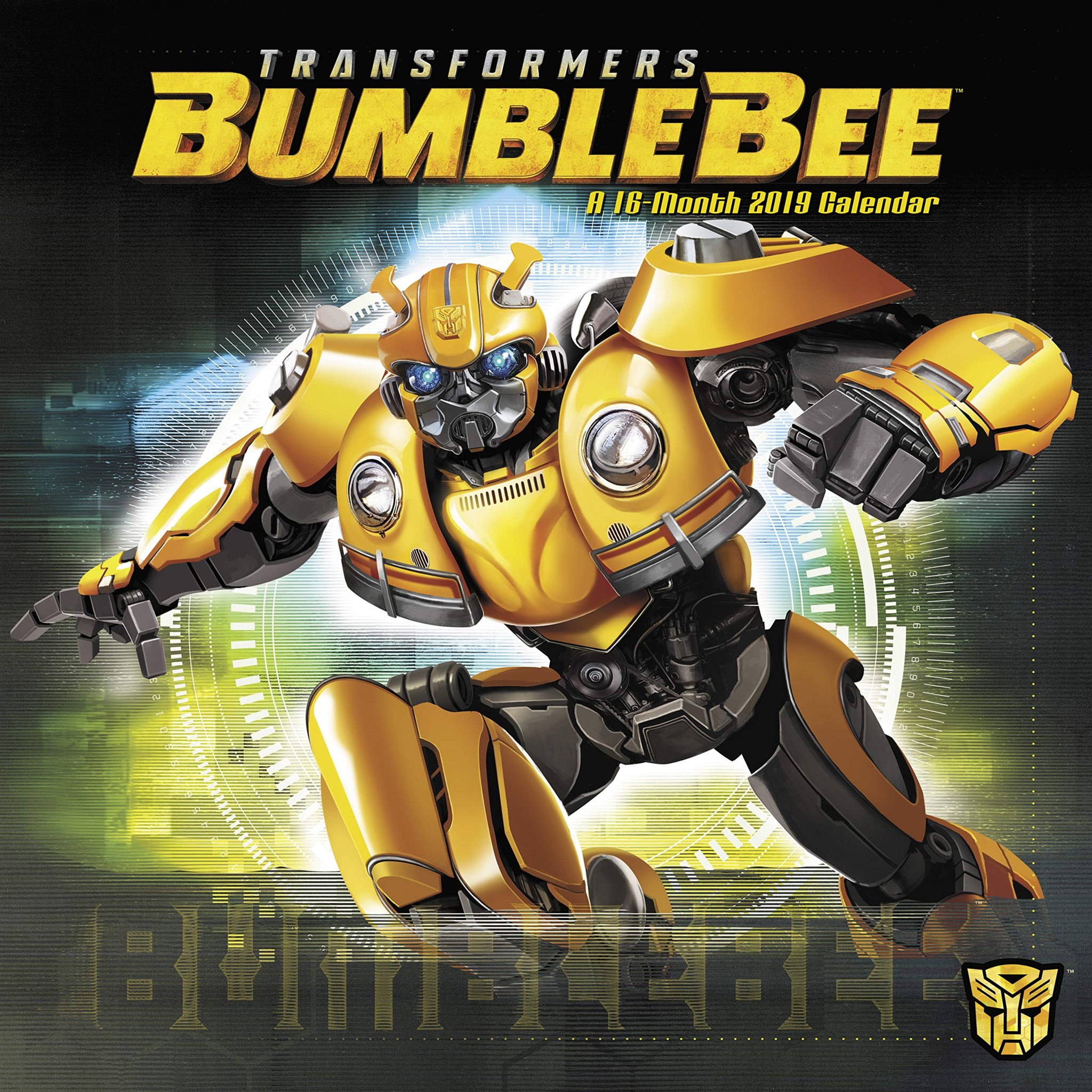 Image result for Bumblebee (2019)